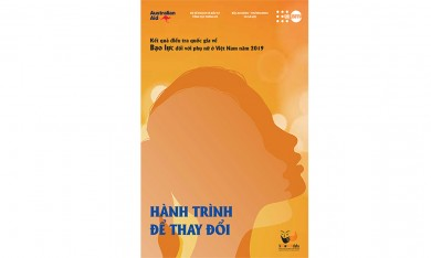 Kết quả Điều tra Quốc gia về Bạo Lực đối với Phụ Nữ ở Việt Nam năm 2019